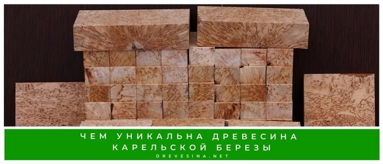 Чем уникальна древесина карельской березы